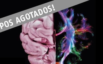 JORNADA INTERNACIONAL DE ACTUALIZACION EN NEUROPSICOLOGIA Y DEMENCIAS